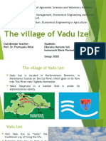 The Village of Vadu Izei