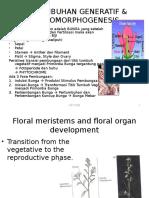 Bab 8-Pertumbuhan Generatif Dan Photomorphogenesis