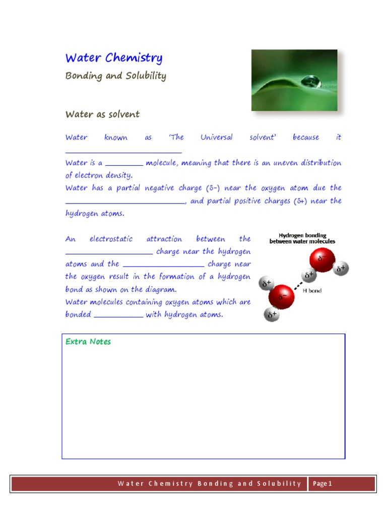 worksheet Water The Nearly Universal Solvent Worksheet Answers bonding and solubility semi notes properties of water chemical bond