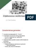 CRYPTOCOCCUS.pptx