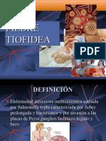 Fiebre Tifoidea Laura Aguilar Perez