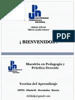 Presentación de  Teoríad del Aprendizaje .pdf