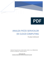 Analiza Pieţei Serviciilor de Cloud Computing (2)