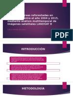 Estudio de Áreas Reforestadas en Pichincha