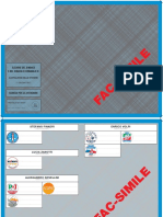 Scheda Elettorale Comune di Castiglione delle Stiviere FAC-SIMILE