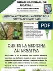 Medicia Alternativa