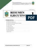 b - Resumen Ejecutivo2