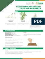 Manzanilla Carta Tecnologica