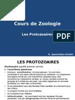Protozoaires Cours
