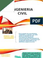 Perfil Del Ingeniro.