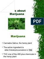 Marijuana Facts 4 Students