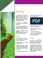 plegable capa de rodadura.pdf