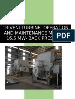 Triveni Turbine Ingles