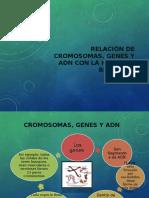 relacindecromosomasgenesyadn-140820002643-phpapp02.pptx