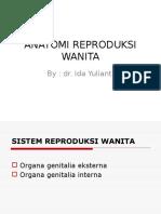 Anatomi Reproduksi Wanita Oleh Dr.ida