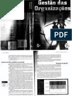 266145130-Introducao-A-Gestao.pdf
