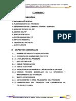 PERFIL SAP TOMANGA.pdf