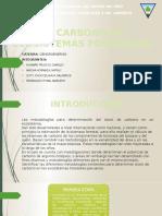 El Carbono en Ecosistemas Forestales