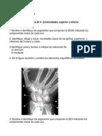004+extremidades+oseas+lab_anato.pdf