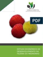 4 Relatório Global Medronho Versão Impressão