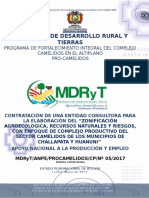 DBCProcamelidosHuanuni17