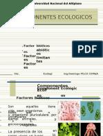 Clase No 5, Componentes Ecologicos