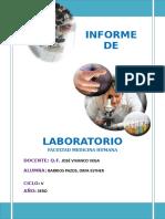 2do Informe de Laboratorio