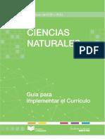 GUIA-CCNN.pdf