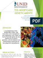Alimentos Modificado Geneticamente