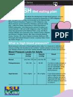 PNS-dash.pdf