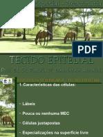 3. TECIDO EPITELIAL