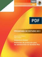 C3AUTOCUIDADOQUINTANAROO.pdf