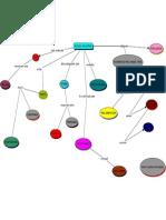 mapa conceitual evolução.pdf