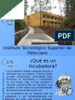 Presentación Incubadora.pptx