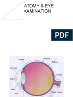 Anatomy & Eye Examination Edit
