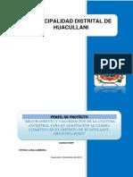 PIP Adaptación al Cambio Climático.pdf