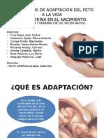MECANISMOS DE ADAPTACION DEL FETO A LA VIDA EXTRAUTERINA EN EL NACIMIENTO