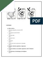 Monografia Ccr7 - Copia