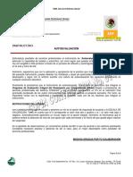 AUTOEVALUACION_PSP.pdf