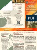 Brochure Arbitraje Comercial Internacional (OEA)