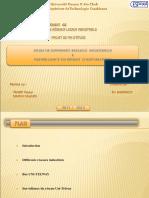 342011850-Diapo-PFE.ppt