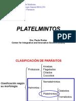 zTaenia platelmintos Céstodos intestino