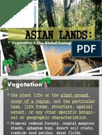 Asia Vegetation