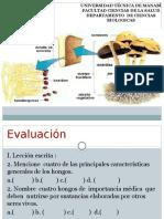 Clase # 3 Micología.2017.Maria