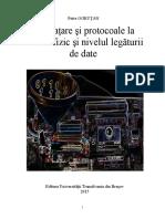 Carte-Interfete Si Protocoale