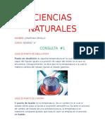 CIENCIAS NATURALES CONSULTA 1.docx