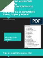 Informe de Auditoría Ambiental Pajan