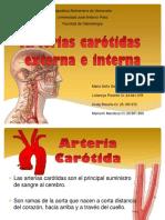 diapositivas carotidas