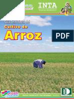 Guia Tecnica de ARROZ 2012