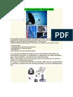 Ejemplos De Monopolios Naturales.docx